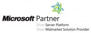 Microsoft Partner 2011