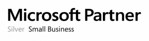 Microsoft Partner Silver Small Business